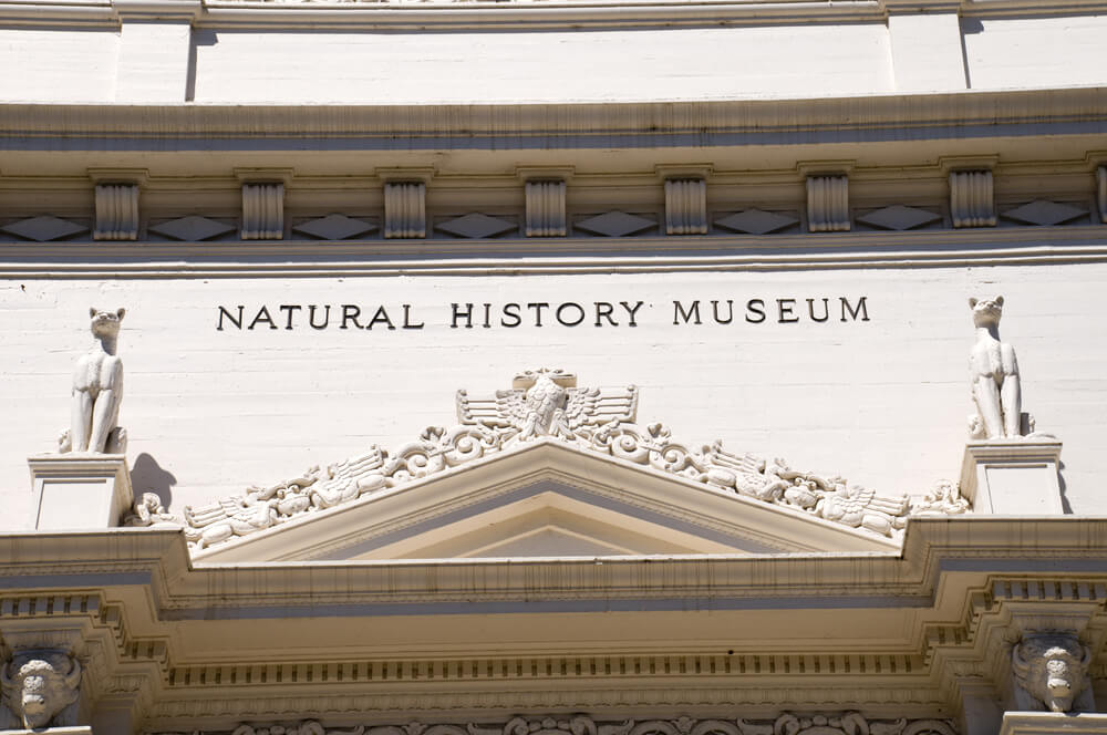 Natural History Museum in San Diego, California