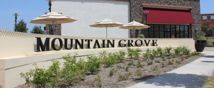 Mountain Grove Shopping Center